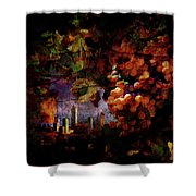 Medieval Tuscany Shower Curtain