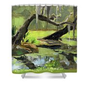 Meditative Swamp Shower Curtain