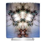 Meditative Symmetry 4 Shower Curtain