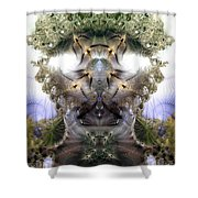 Meditative Symmetry 5 Shower Curtain