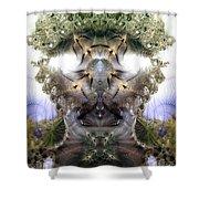 Meditative Symmetry 5 Shower Curtain