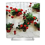 Mediterranean Flower Shower Curtain