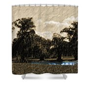 Meet Me By The Willows Shower Curtain