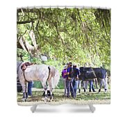 Meet Me Under The Trees Shower Curtain