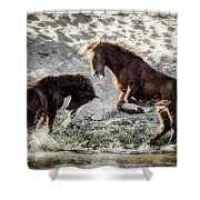 Meeting On The River  Shower Curtain