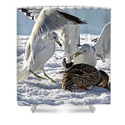 Meeting Time Shower Curtain