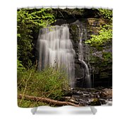 Meigs Falls Two Shower Curtain