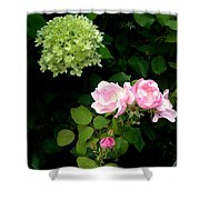 Melody Of Flowers Shower Curtain