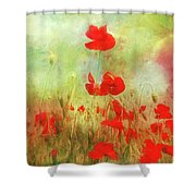 Melody Of Summer Shower Curtain