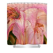 Melting Lilly Shower Curtain