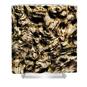 Melting Wood Shower Curtain by Wim Lanclus