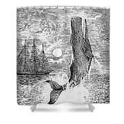 Melville: Moby Dick Shower Curtain by Granger