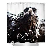 Memorial Eagle Shower Curtain