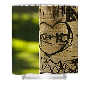 Memories In The Aspen Tree Shower Curtain