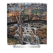 Memories Shower Curtain by Nadine Rippelmeyer
