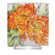 Memories Of Spring Shower Curtain