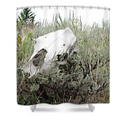 Memories Past Shower Curtain