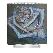 Memory Expressed Shower Curtain