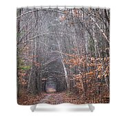 Memory Lane 1 Shower Curtain