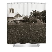 Mennonite Farm - Brown And White Field Shower Curtain