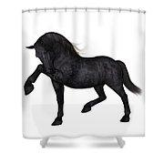 Mentor  Shower Curtain