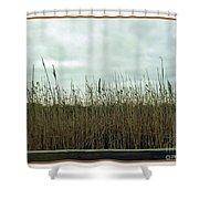 Mentor Marsh Shower Curtain