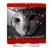 Meow-entine Shower Curtain