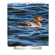 Merganser Shower Curtain