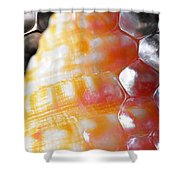 Merge 2 Shower Curtain