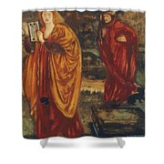Merlin And Nimue 1861 Shower Curtain