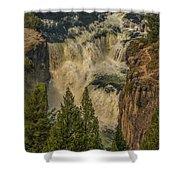 Mesa Falls In Summer Shower Curtain