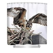 Messy Nest Shower Curtain