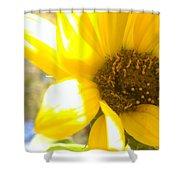 Metallic Green Bee In A Sunflower Shower Curtain