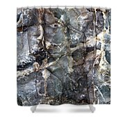Metamorphosis  Male Shower Curtain