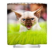 Mew Kitty Funny Mad Face Shower Curtain