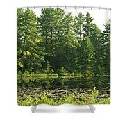 Mew Lake Algonquin Park Shower Curtain