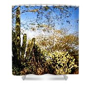 Mexican Country Road Shower Curtain