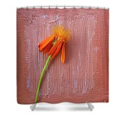 Mexican Flame Shower Curtain