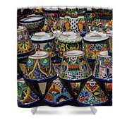 Mexican Flowerpots Shower Curtain