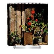 Mexican Geraniums Shower Curtain