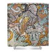 Mexico: Ixmiquilpan Fresco Shower Curtain