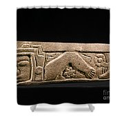 Mexico: Totonac Swimmer Shower Curtain