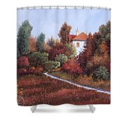 Mezza Bicicletta Nel Bosco Shower Curtain