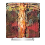 Mhc #091227 Shower Curtain