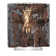 Mhc #100108 Shower Curtain