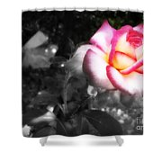 Mi Rosa Shower Curtain