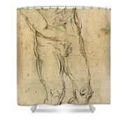 Michelangelo: Male Nude Shower Curtain