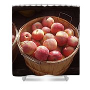 Michigan Apples Shower Curtain