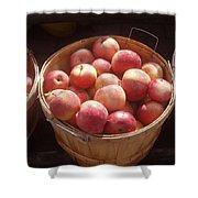Michigan Apples Shower Curtain