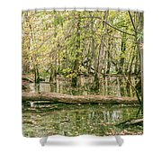 Michigan Swamp Shower Curtain